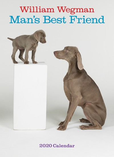 William Wegman Man's Best Friend 2020 Wall Calendar