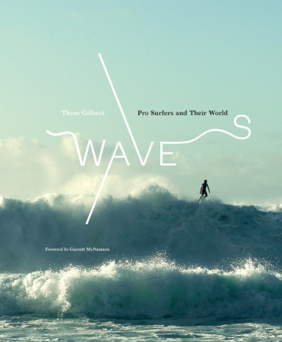 Waves Pro Surfers and Their World