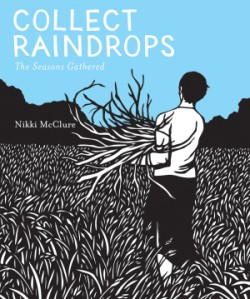 Collect Raindrops (Reissue) The Seasons Gathered