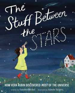 Stuff Between the Stars How Vera Rubin Discovered Most of the Universe