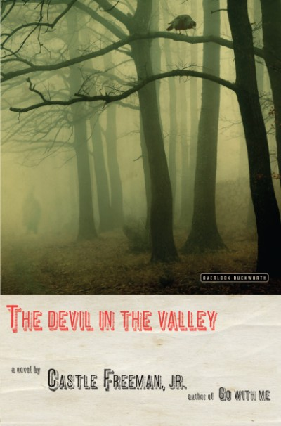 Devil in the Valley A Novel