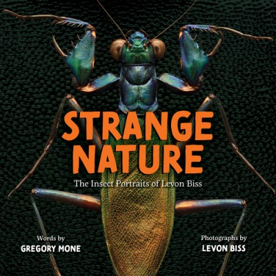 Strange Nature The Insect Portraits of Levon Biss