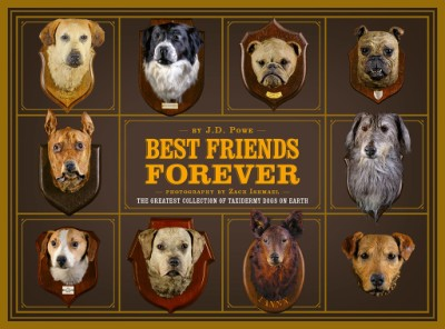 Best Friends Forever The Greatest Collection of Taxidermy Dogs on Earth