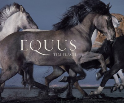 Equus (Mini)