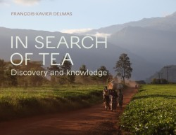 In Search of Tea Discovery and Knowledge