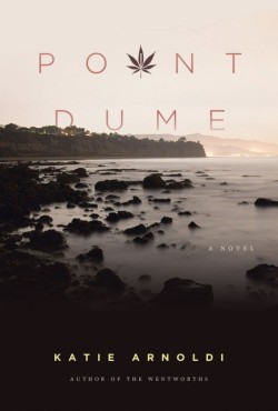 Point Dume A Novel