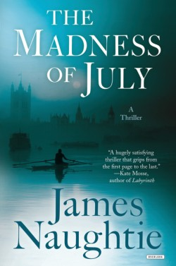 Madness of July A Thriller