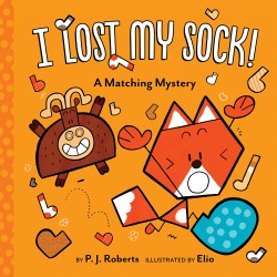 I Lost My Sock! A Matching Mystery