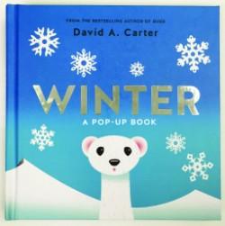 Winter A Pop-up Book