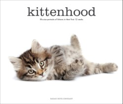 Kittenhood Life-size Portraits of Kittens in Their First 12 Weeks