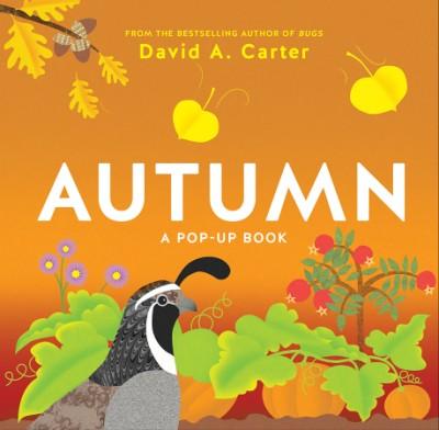Autumn A Pop-Up Book