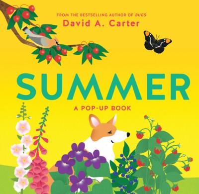 Summer A Pop-Up Book