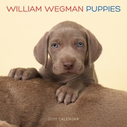 William Wegman Puppies 2020 Wall Calendar