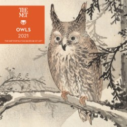Owls 2021 Mini Wall Calendar