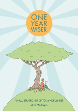 One Year Wiser An Illustrated Guide to Mindfulness