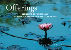 Offerings Moments of Mindfulness from the Masters of Tibetan Buddhism (Mini)