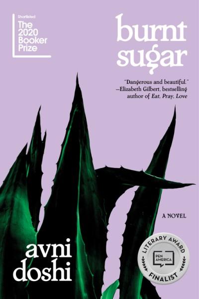 Burnt Sugar A Novel