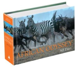 African Odyssey 365 Days