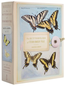 Butterflies of Titian Ramsay Peale Notecards