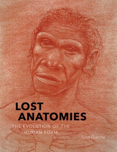 Lost Anatomies The Evolution of the Human Form