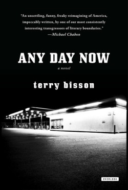 Any Day Now A Novel