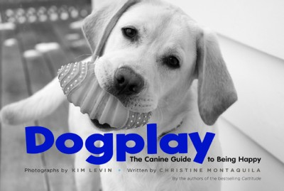 Dogplay The Canine Guide to Being Happy