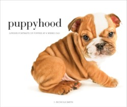 Puppyhood Life-size Portraits of Puppies at 6 Weeks Old