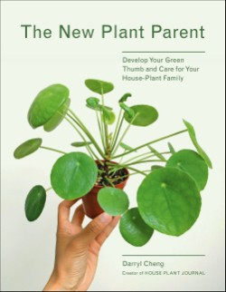 New Plant Parent Develop Your Green Thumb and Care for Your House-Plant Family