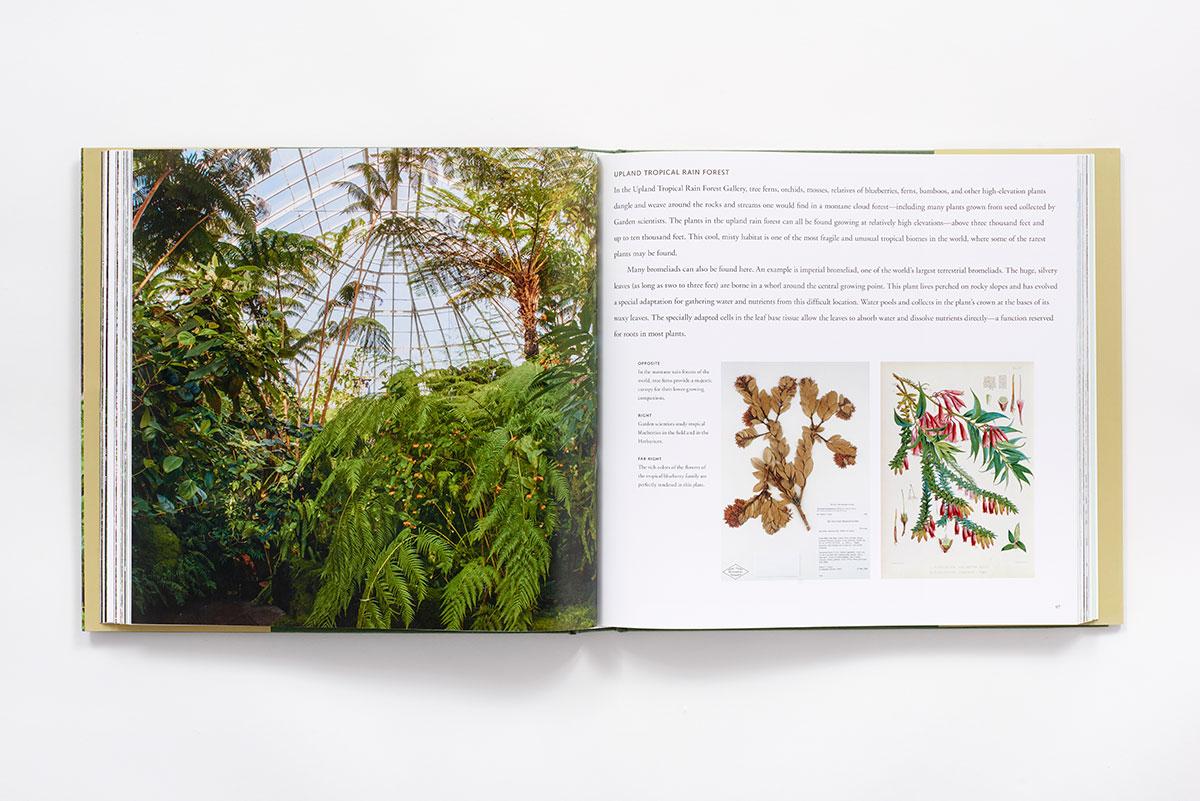 The New York Botanical Garden Hardcover Abrams